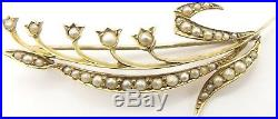 Antique 9 carat yellow gold, pearl set flower spray brooch in a nice antique box