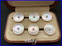 Antique Tiffany Leather Box & 6 PCS Set of Unsigned 14 K Gold Tuxedo Pearl Studs