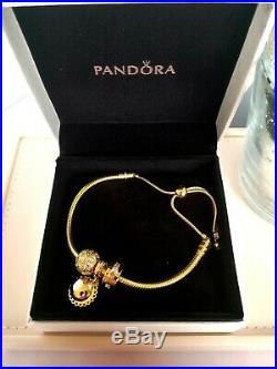 New Pandora 18k S925 Ale Gold Snake Chain Sliding Bracelet+ Charm Set 568640c01
