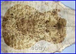 #Y318-1 AAAAA Barky Golden Camphor Wood Burl Electric Bass Drop top set Luthier