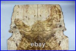 #Y375-1 5A Barky Golden Camphor Wood Burl les paul Guitar Drop top set Luthier