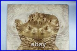 Y444-1 5A Golden Camphor Wood burl Electric Bass Bookmatch Drop Top Set Luthier